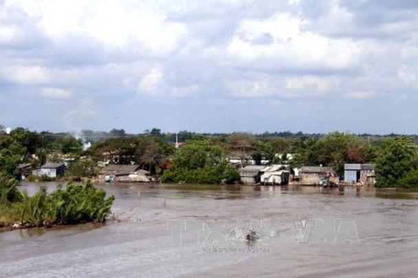 Sạt lở đất ven sông tại huyện Năm Căn, Cà Mau: ảnh hưởng đến hàng chục hộ dân
